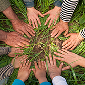 Classroom without walls: The power of outdoor learning