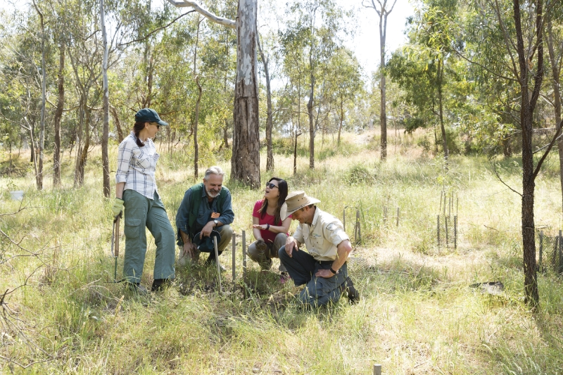 Three crouching, 1 standing: Friends of Bats and Bushcare volunteers at Yarra Bend Park, Parks Victoria