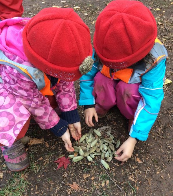Kids in re beanies playing with leaves