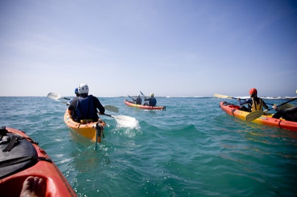 4 sea kayaks in the ocean